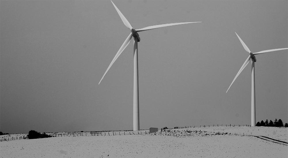 Chouette-Architecture-éolienne-1000